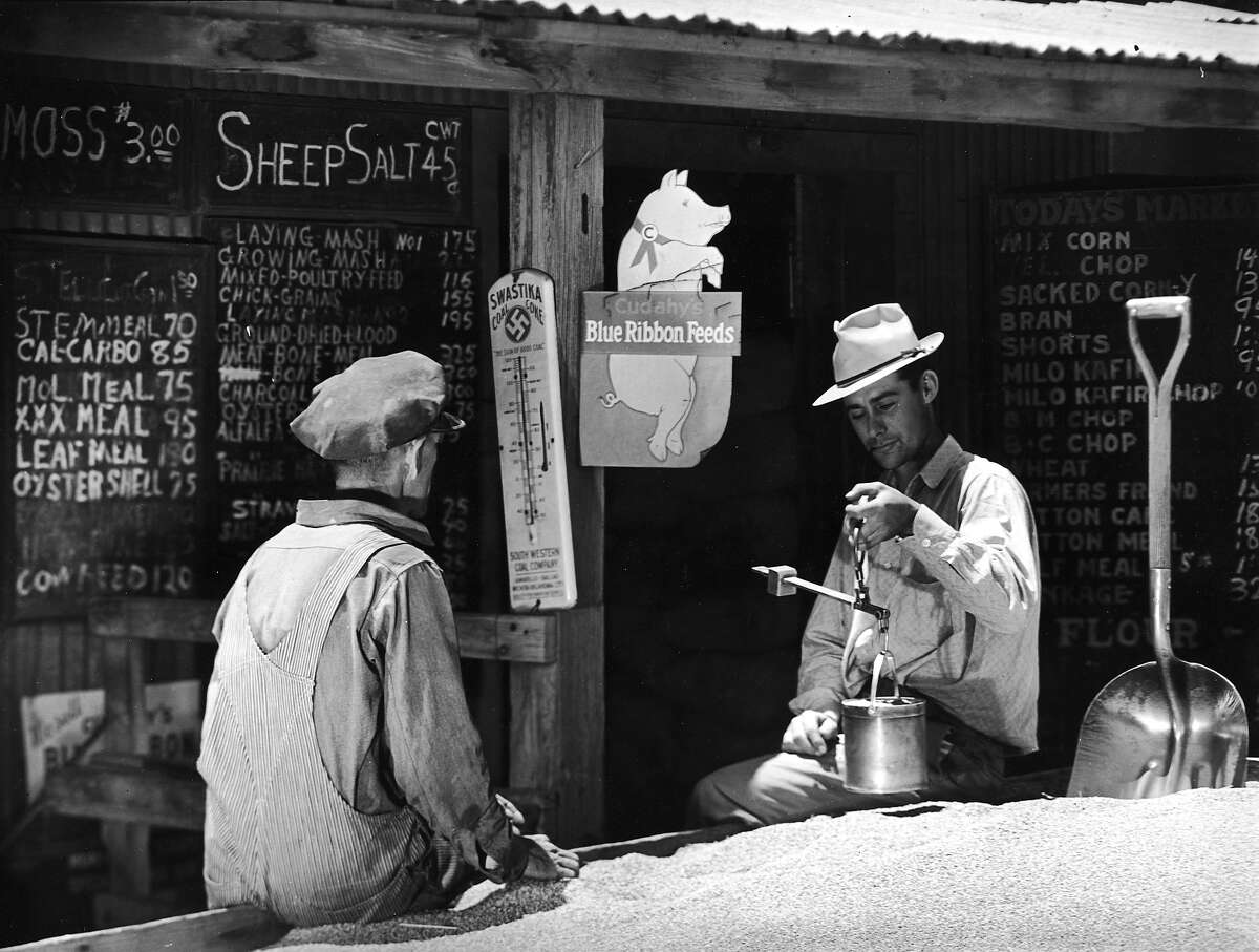 Circa 1939: Blue Ribbon Feeds store worker using handheld scale to weigh out the density of a pickup load of wheat brought to him for purchase to be sold as chicken feed. (Photo by Margaret Bourke-White/Time & Life Pictures/Getty Images)