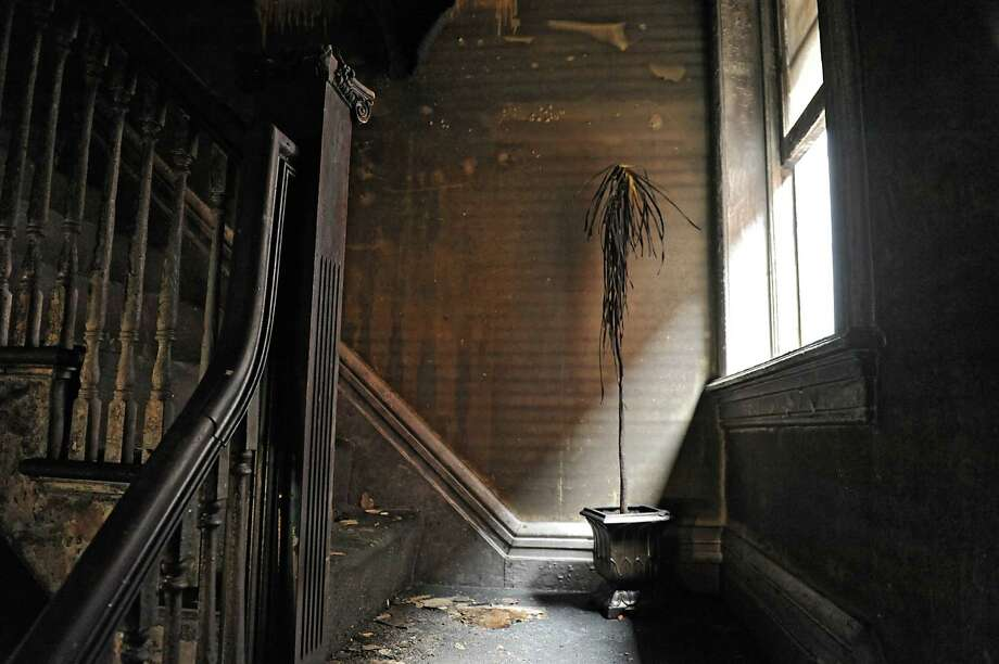 Charred plant on stairway to second floor in the Albany Damien Center Thursday, Aug. 29, 2013. The Damien Center burned overnight on Lake Ave. in Albany, N.Y.  (Lori Van Buren / Times Union) Photo: Lori Van Buren / 00023690A