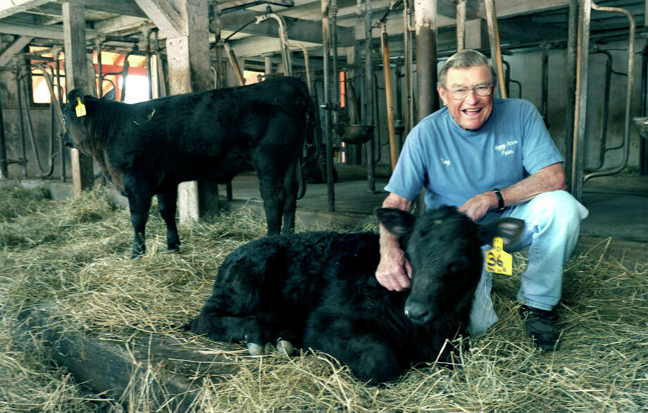 In this file photo Tony Hapanowich, owner of Happy Acres Farm in Sherman, Conn. is pictured with Black Angus calves in his his barn. Photo: Carol Kaliff, ST / The News-Times