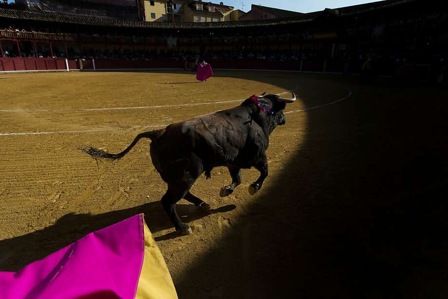 A bull runs during a bullfight, in Toro, Spain, Wednesday, Aug. 28, 2013. In August, hundreds of villages around Spain celebrate their patron saints, with bullfights, music and parties on the streets. (AP Photo/Daniel Ochoa de Olza) Photo: Daniel Ochoa De Olza, Associated Press