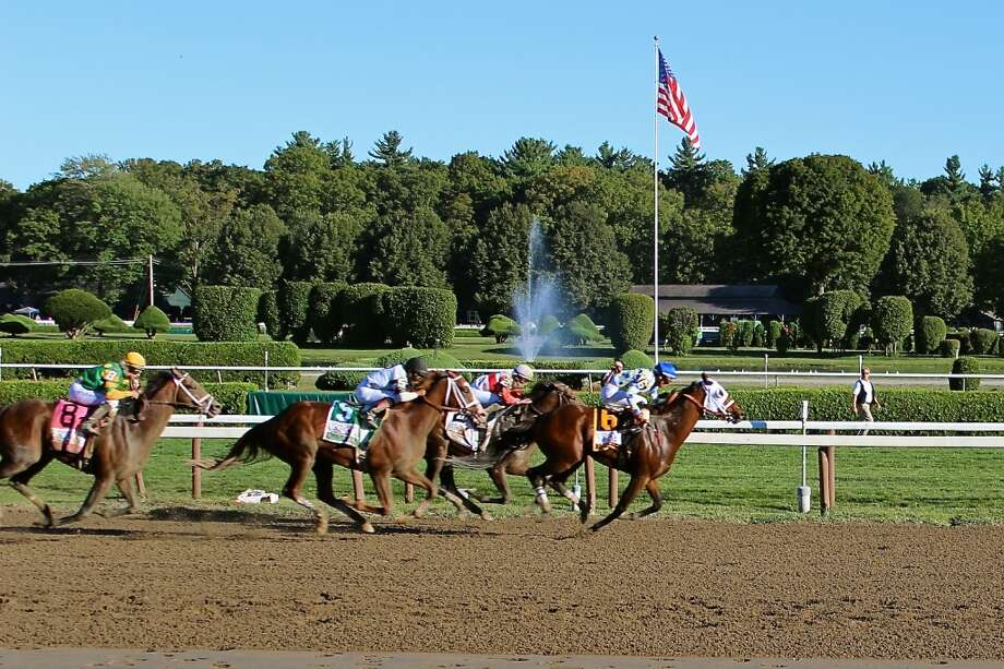 Travers 144 - stretch run! (Lorraine Maloney)