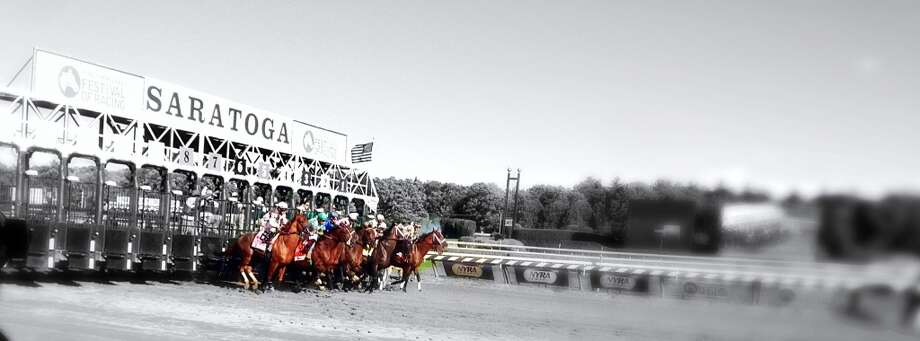 Whitney stakes 2013. Taken from the winners circle. (Jane Motion)