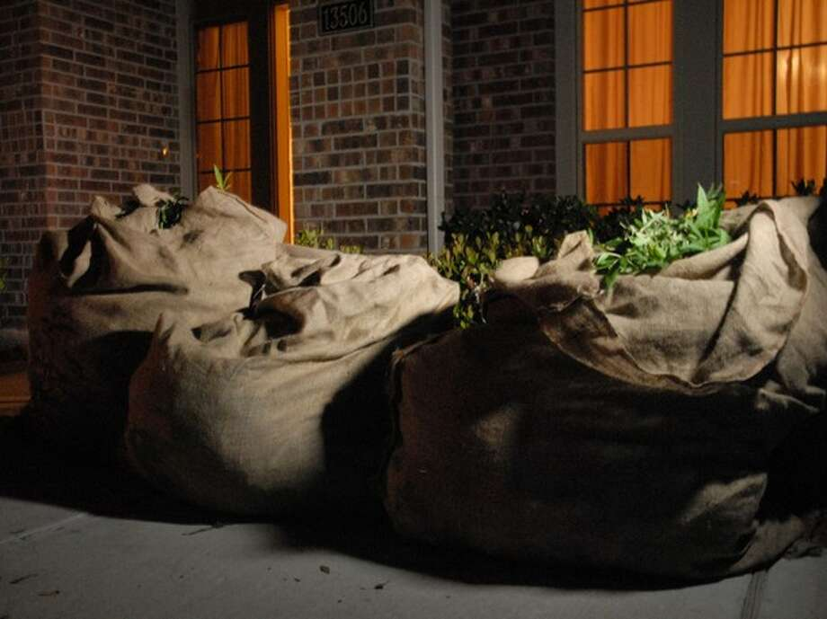 Big bags of seized marijuana by drug investigators Photo: Wall To Wall Media