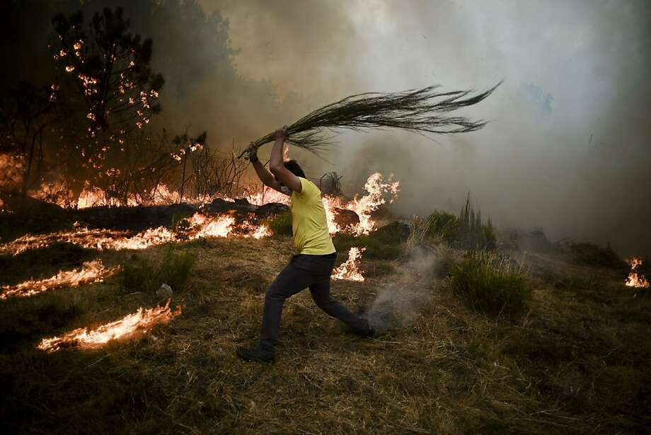 Firefighting techniques are more primitive in Portugal:A man tries to beat a wildfire to death in the mountain village of Caramulo. Photo: Patricia De Melo Moreira, AFP/Getty Images