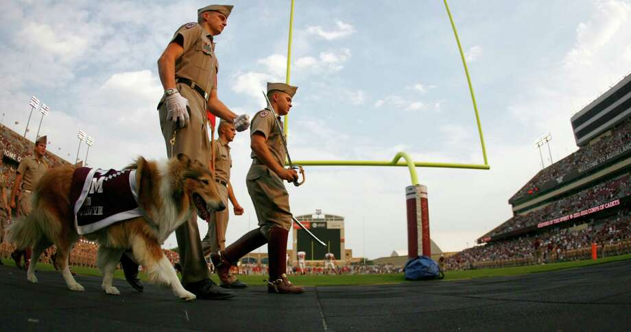 Reveille VIII walks with the Corp of Cadets before the Texas A&M and Southern Methodist NCAA football game, Sunday, Sept. 4, 2011, in Kyle Field in College Station. Photo: Nick De La Torre, Houston Chronicle / © 2011 Houston Chronicle