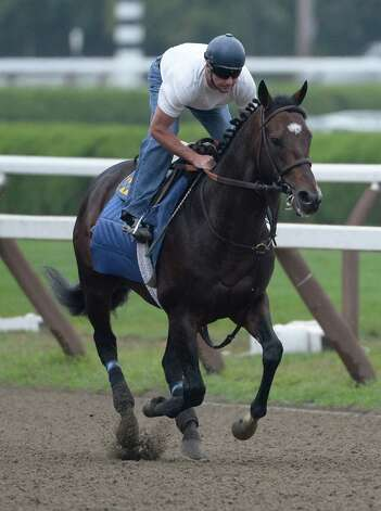 Woodward morning line favorite Paynter with exercise rider Simon Harris gallops on the main track Aug 30, 2013 at the Saratoga Race Course in Saratoga Springs, N.Y.   (Skip Dickstein/Times Union) Photo: SKIP DICKSTEIN