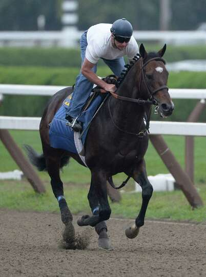 Woodward morning line favorite Paynter with exercise rider Simon Harris gallops on the main track Au