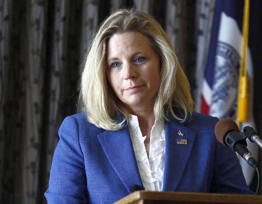 Liz Cheney, daughter of Dick Cheney, is running for the Senate in Wyoming. Photo: Matt Young, Associated Press