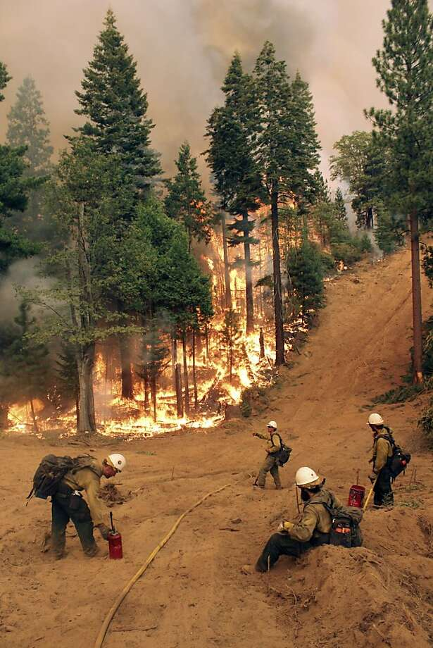 The Bureau of Land Management Silver State hotshot crew fights the southern flank of the Rim Fire. Containment increased to 35 percent, but the 2-week-old blaze grew rapidly. Photo: Mike McMillan, Associated Press
