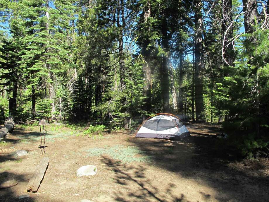 First night's tent site on peninsula at Lake Eleanor inside Yosemite boundary -- the fire burned down to the lake and took out all campsites Photo: Michael Furniss/Wild Earth Press, Picasa