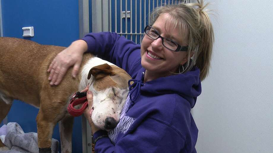 "Tami Augustyn has launched the ""Buck Foundation"" to spread the word about animal abuse to schools, juvenile probation facilities and shelters across the area. (Read more about his story here.)