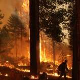 In this Friday, Aug. 30, 2013 image provided by the U.S. Forest Service, a member of the BLM Silver State Hotshot crew patrols the fire line during burn operations on the southern flank of the Rim Fire in California. The blaze has scorched 343 square miles of brush, oaks and pines and 11 homes, as of Saturday Aug. 31, 2013. (AP Photo/ U.S. Forest Service, Mike McMillan)