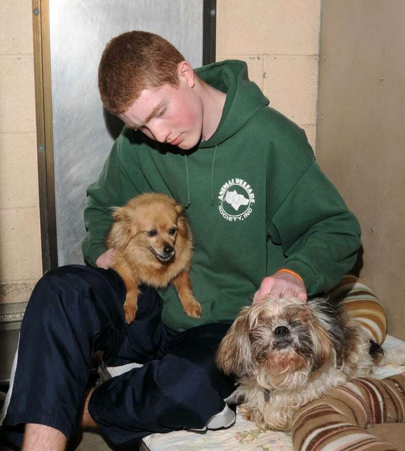 John Koellmer, 15,  of New Milford, CT, a volunteer at the Animal Welfare Society shelter, in New Milford, CT, cares for two dogs,that are the longest residents of the shelter, on Tuesday, Jan. 19, 2010 Photo: Jay Weir / The News-Times