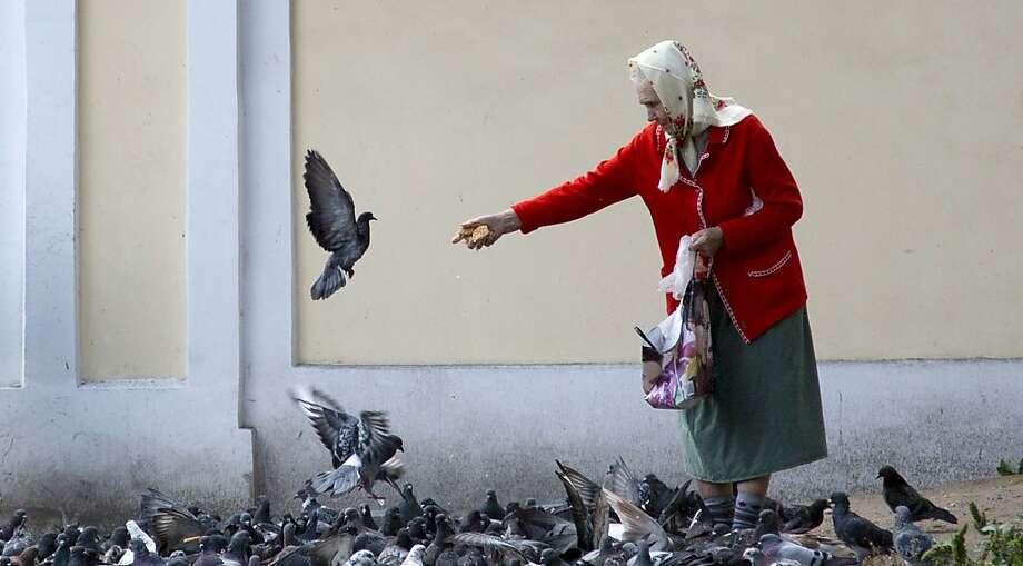 A woman feeds pigeons near the Alexander Nevsky Monastery in St. Petersburg, Russia on Tuesday Sept. 3, 2013. The Alexander Nevsky Monastery complex, which is currently under renovation, is home to some of the oldest buildings in the city. The complex also has two cemeteries which contain the graves of some of the giants of Russian culture, including Tchaikovsky, Dostoevsky, and Glinka. (AP Photo/Virginia Mayo) Photo: Virginia Mayo, Associated Press