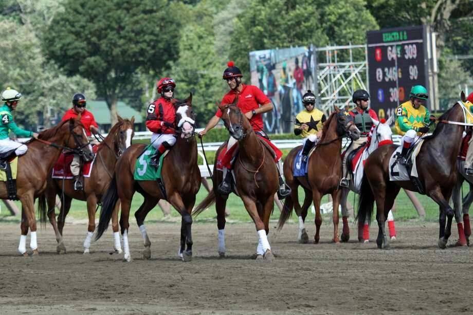 Horses are led into the gate.  Race 7, 7-29-2013. (Linda Fountain)