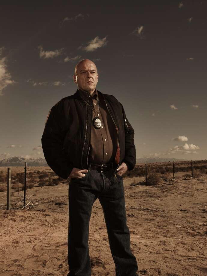 Dean Norris, who plays Walter White's DEA brother-in-law Hank, can currently be seen in CBS's 'Under the Dome.' He will also appear in a legal drama entitled 'The Counselor' with Brad Pitt, Cameron Diaz and Michael Fassbender. Norris will also star in 'Small Time' as a used car dealer who tries to convince his son to go to college. Photo: Frank Ockenfels 3/AMC