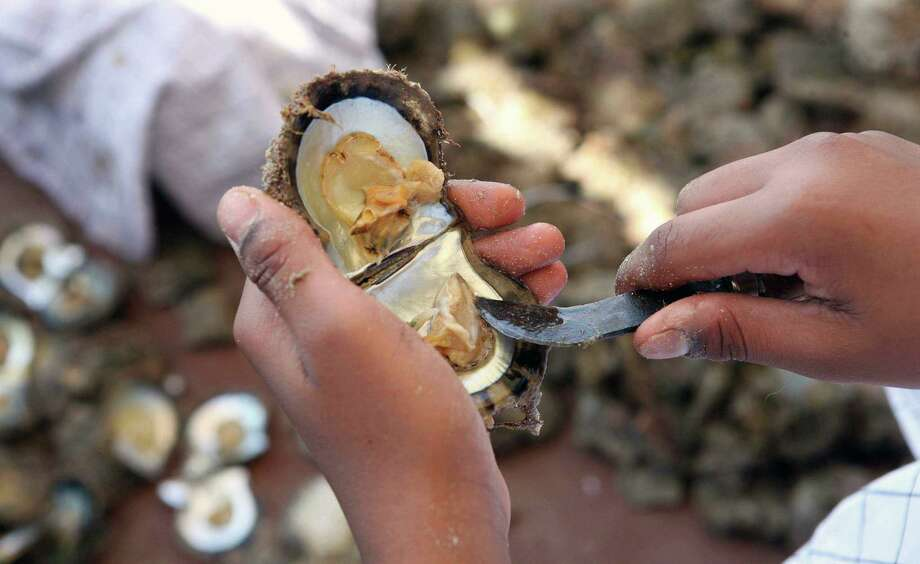 You can make a decent living hunting for pearls, but you also have to be lucky. Pearl divers can earn $500 a day in the States ... if you find anything. Source: PayScale Photo: YASSER AL-ZAYYAT, AFP/Getty Images / 2012 AFP
