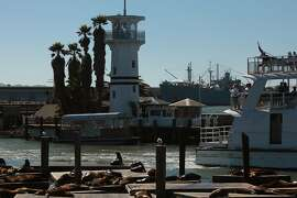 A view of Forbes Island in San Francisco, California on Thursday, September 5, 2013.