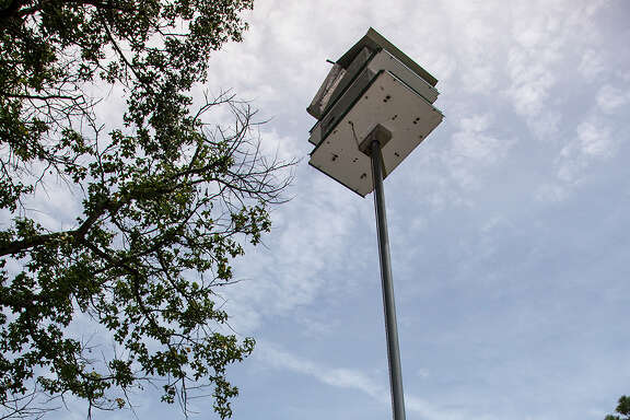 In late summer, after the purple martins have left for South America, it is time to take down the purple martin house. Toss old nesting material, clean the apartments, cap the holes and lower the box for the winter.