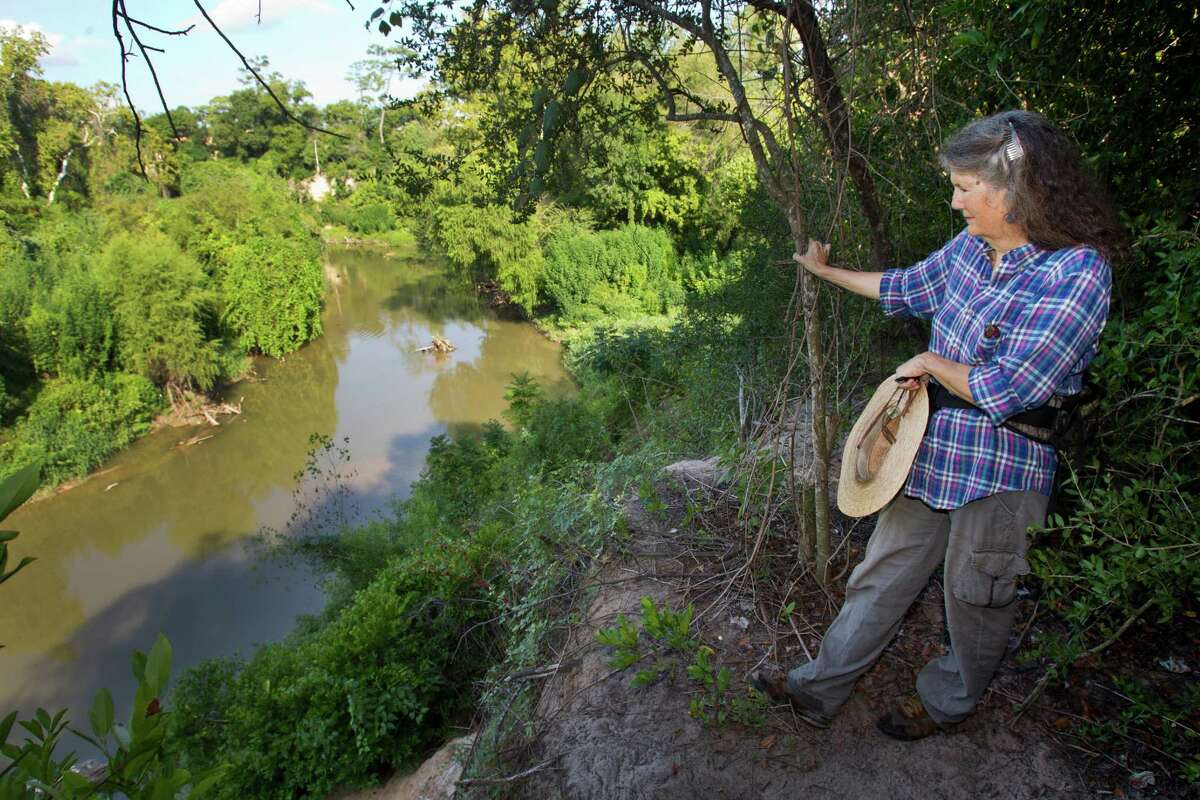 """Katy Emde, a conservationist, looks at a section of Buffalo Bayou that flows trough the Hogg Bird Sancuary Sunday, Sept. 1, 2013, in Houston. The Sierra Club is alarmed over plans to """"restore"""" a 1.5-mile stretch of Buffalo Bayou that flows through the area. That restoration, conservationist say, isn't a restoration but a stabilization project. ( Brett Coomer / Houston Chronicle )"""