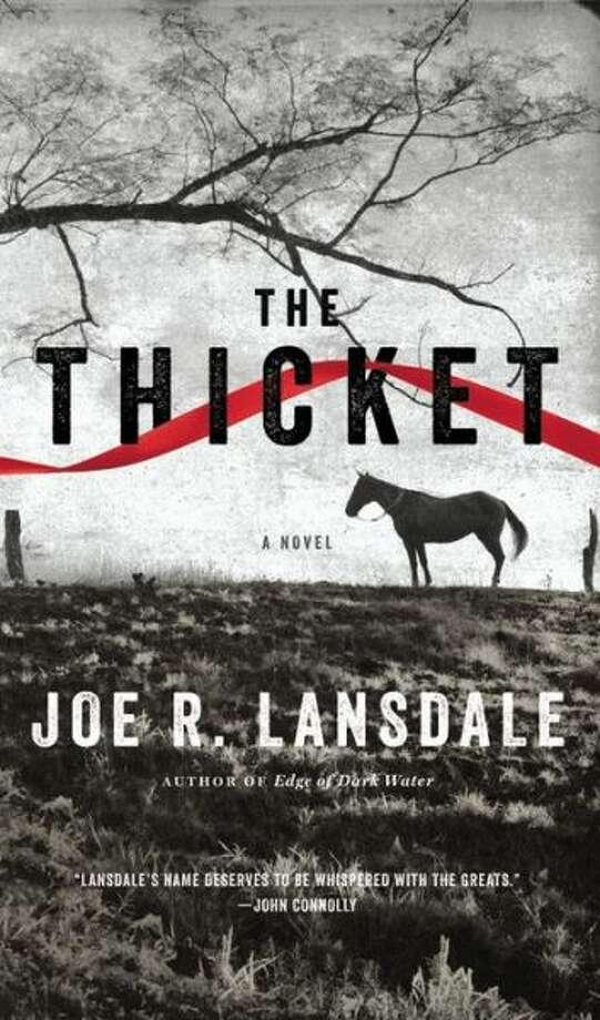 Author Joe R. Lansdale Photo: Xx