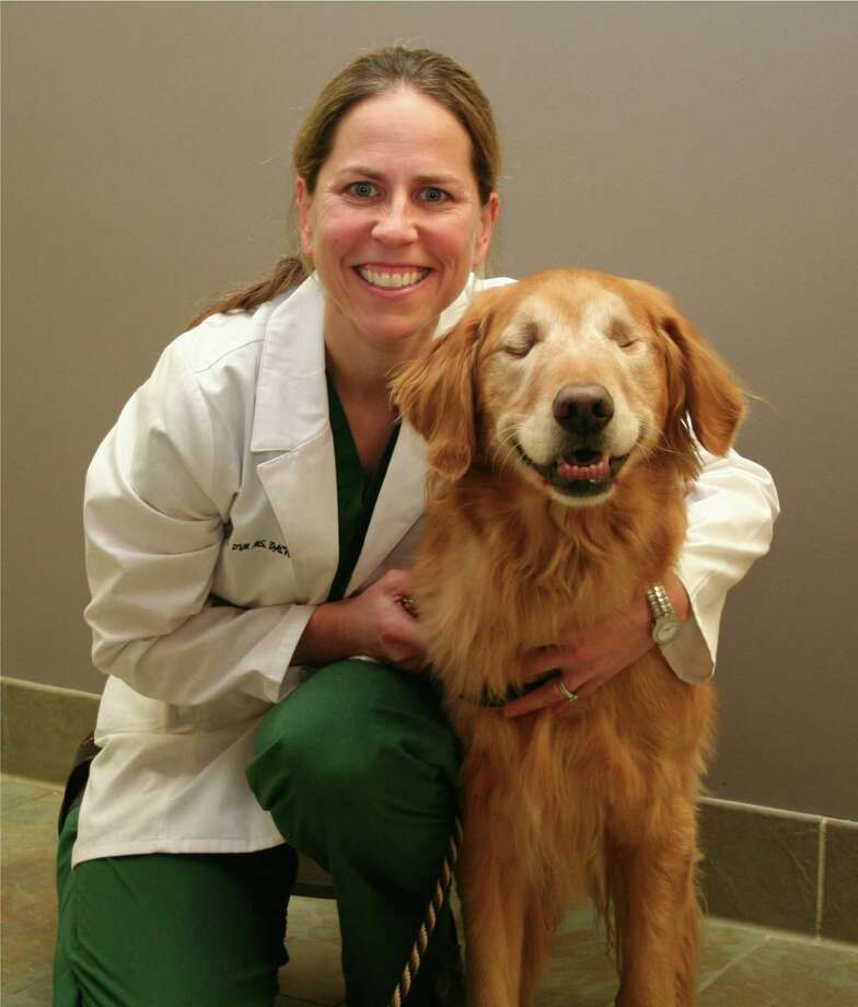The story of Dr. Cory Mosunic, of Newtown Veterinary Specialists, and Dutchess, a golden retriever, is told in a new children's picture book. Co-authored by Dutchessí owner and trainer Mark Condon, and writer Julie Phillips, the book is called ìA Day with Dutchess: Life Lessons from a Blind Therapy Dog.î Photo: Contributed Photo