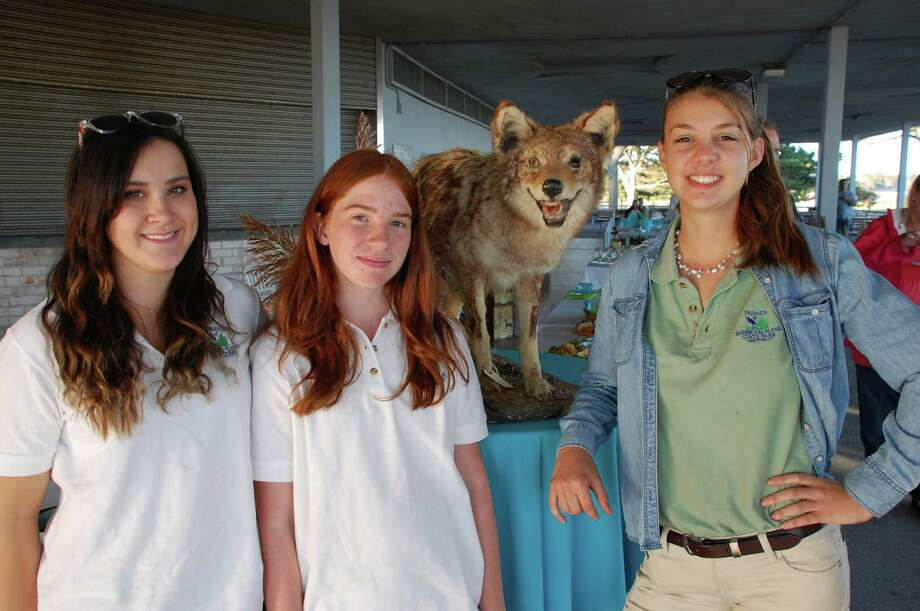 Representatives of the Sherwood Island Nature Center at the Shorefest on Friday include, from left, interns Alex Purcell, 17 of Westport, and Kallie Fellows, 14, of Fairfield, with Ellie Gilchrist, assistant director. Photo: Jarret Liotta / Westport News contributed