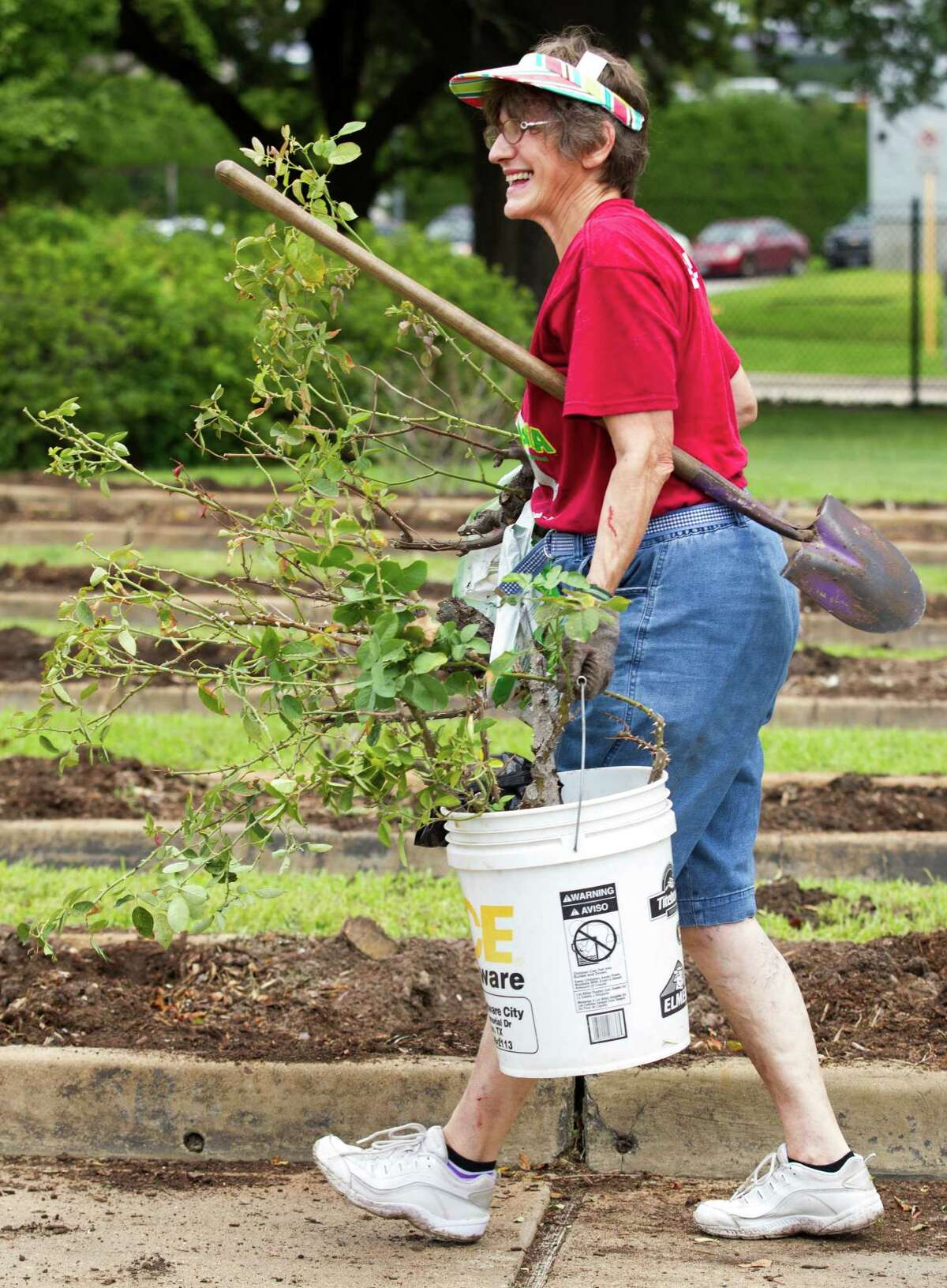 Elizabeth Davies carries her shovel and roses while collecting plants at the Houston Garden Center on Saturday, Sept. 7, 2013, in Houston.