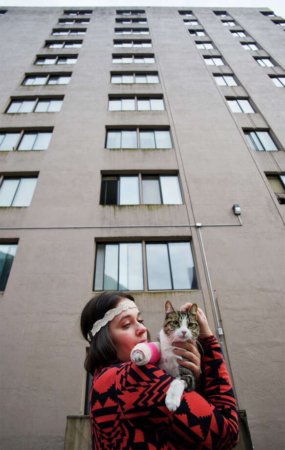 In this Sept. 5, 2013 photo, Stephanie Gustafson holds her two-year-old female cat, Wasabi, after returning from the veterinarian hospital in Juneau, Alaska. The cat survived a fall from the 11th floor of the Mendenhall Apartment building after chasing a mosquito out the window. Photo: AP