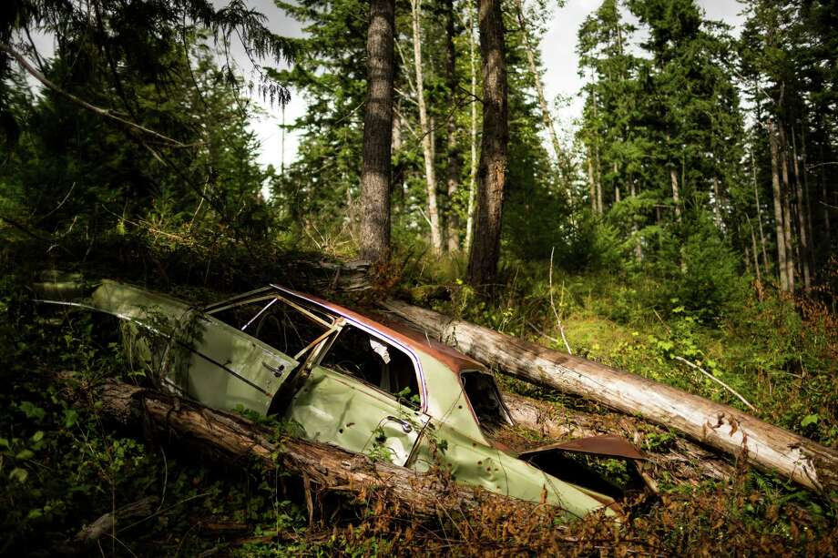 An abandoned Chevy sits near Washington's ghost town of Lester. Photo: JORDAN STEAD, SEATTLEPI.COM / SEATTLEPI.COM