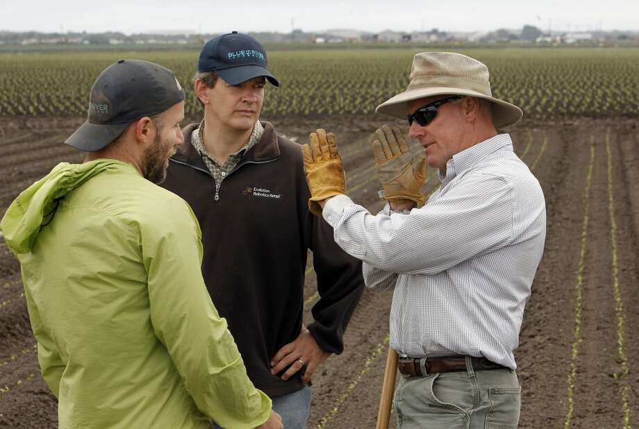 (l to r)  Willy Pell, Jim Ostrowski and Matt Rossow discuss the operation of the Lettuce Bot  machine. Photo: Michael Macor, San Francisco Chronicle