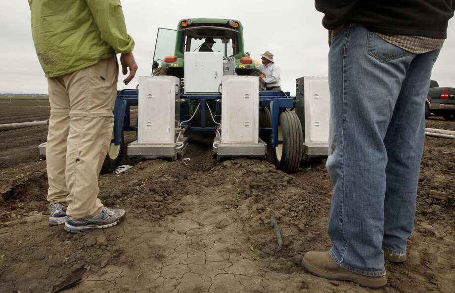 The team prepares to pull the Lettuce Bot  machine through a field. Photo: Michael Macor, San Francisco Chronicle