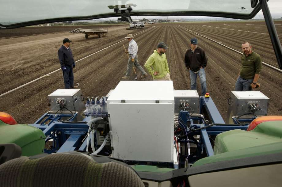 The team prepares to process a romaine lettuce field in Castroville. Photo: Michael Macor, San Francisco Chronicle