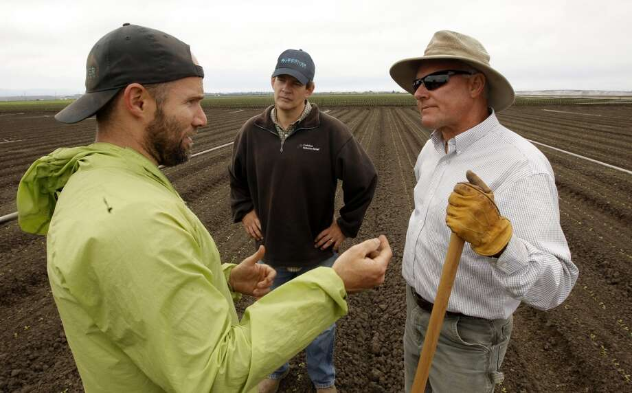 Team members Willy Pell, (left) Jim Ostrowski and Matt Rossow, (right) discussing how the Lettuce Bot machine is operating. Photo: Michael Macor, San Francisco Chronicle