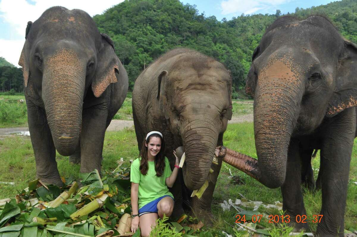 Langham Creek High School senior Katherine Heller visits with rescued elephants she helped care for in Thailand this summer.
