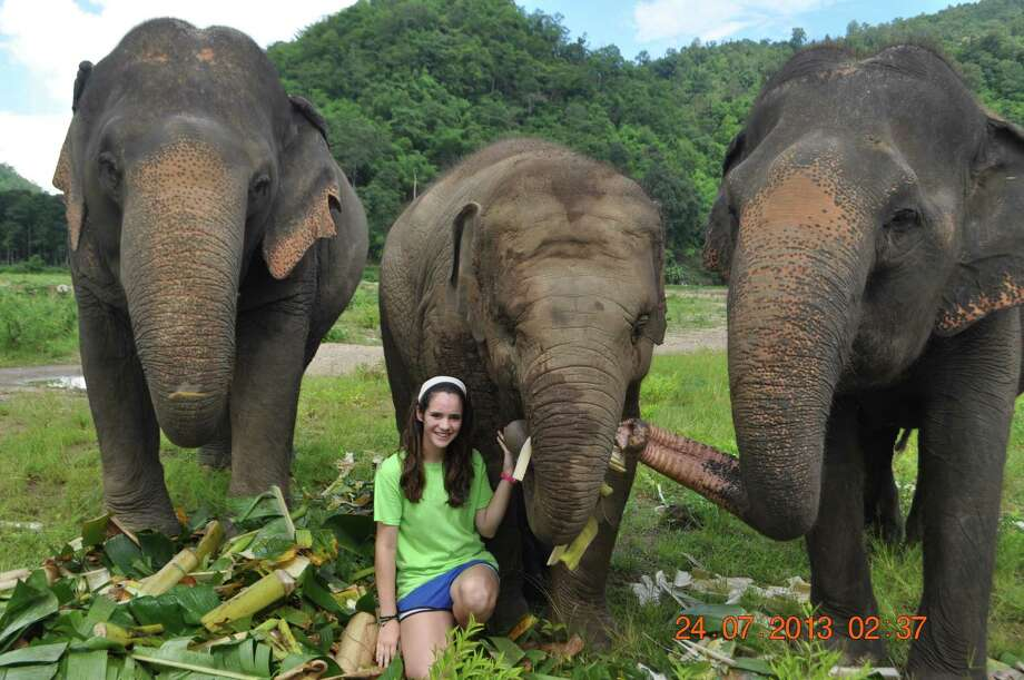 Langham Creek High School senior Katherine Heller visits with rescued elephants she helped care for in Thailand this summer. Photo: Provided By Langham Creek High School