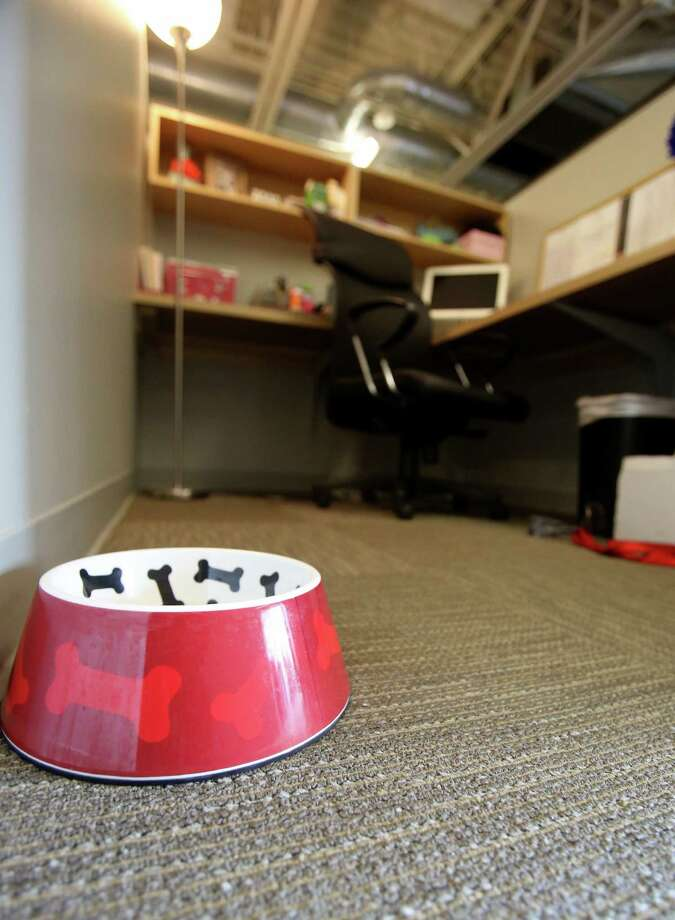 A doggy dish sits on a Amy Foxhall's cubicle floor at KGB Texas on Friday Aug. 23, 2013.  Members of the KGB Texas staff bring their dogs to work on Fridays. Photo: Helen L. Montoya, San Antonio Express-News / ©2013 San Antonio Express-News