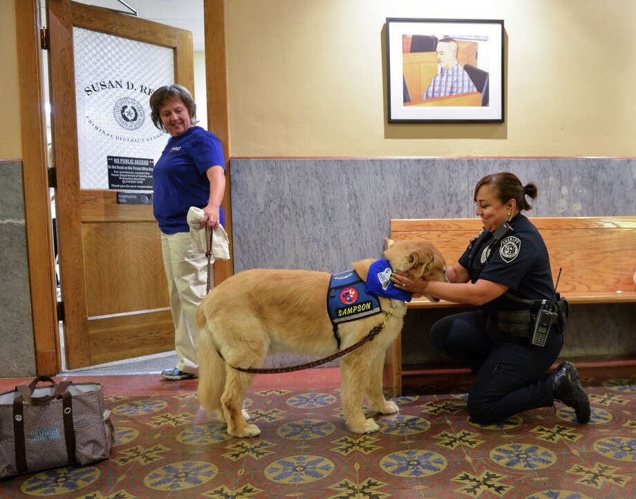 Sampson is petted by Bexar County Deputy Margot Rendon in a courthouse hallway as Sampson's owner, Becky Snodgrass, looks on. Photo: Robin Jerstad