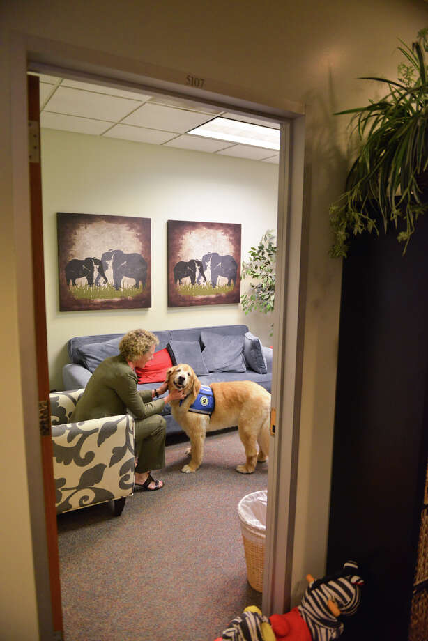 Sampson is petted by Catherine Babbitt, the chief of the Family Justice and Victim Protection Division of the District Attorney;s office. Photo: Robin Jerstad