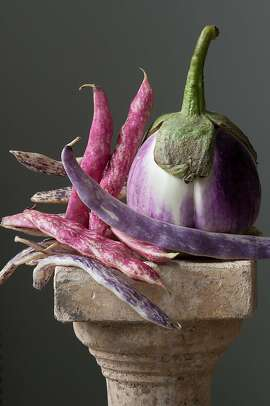 """Calliope: Eggplant with beans,"" by Lynn Karlin, features Rosa Bianca, an Italian heirloom eggplant. The beans are Tongue of Fire (red) and Dragon Tongue (purple) popular in Italy originally from South America."