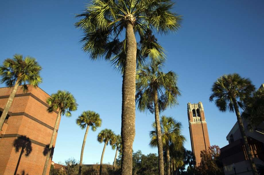 6. University of Florida -- Gainesville, Florida Photo: Danita Delimont, Getty Images/Gallo Images