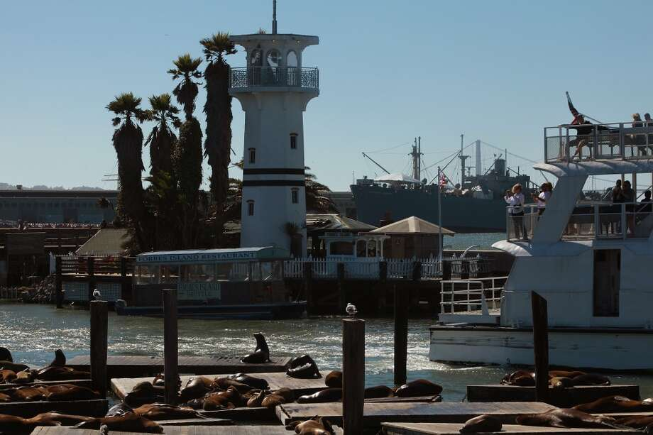 A view of Forbes Island in San Francisco. Photo: Liz Hafalia, The Chronicle