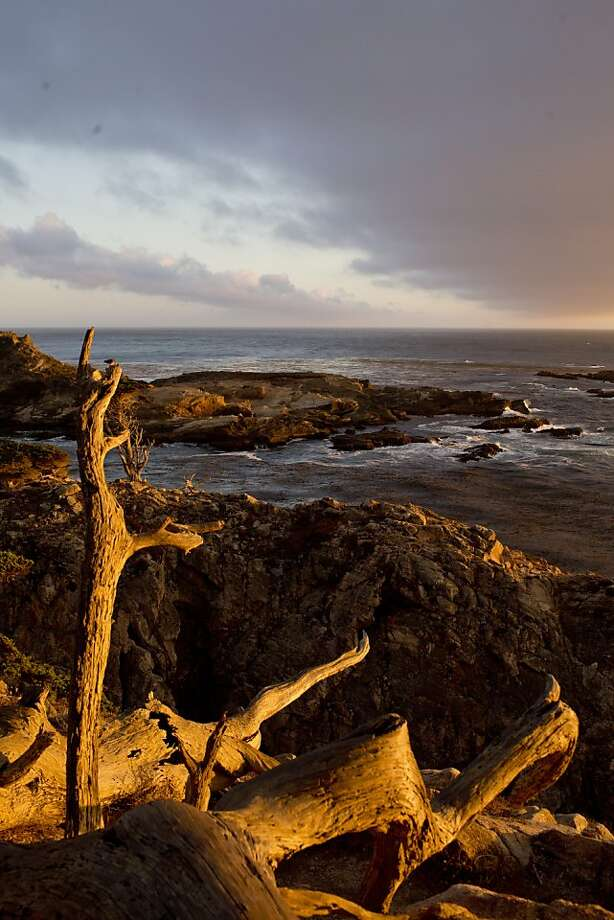Sunset at the Allen Grove inside Point Lobos Preserve in Carmel Highlands offers one of the magnificent scenes, more perfect than a painting, that make the Monterey Peninsula seem unreal. Photo: Jason Henry, Special To The Chronicle