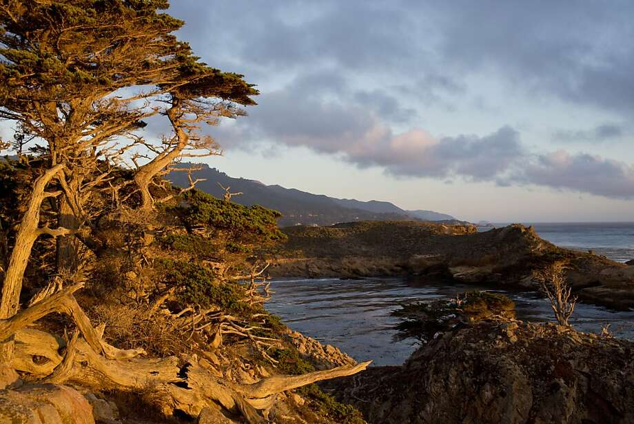 The sun sets over Allen Grove at Point Lobos State Natural Reserve, which was cleared of nearly all signs of its industrial past when it became a state park. Photo: Jason Henry, Special To The Chronicle