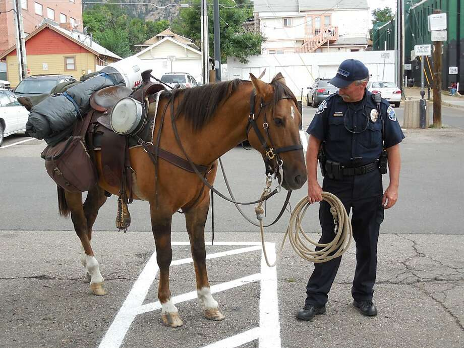 I TOLD him to get a designated rider: A police officer detains a horse after its rider was arrested on 