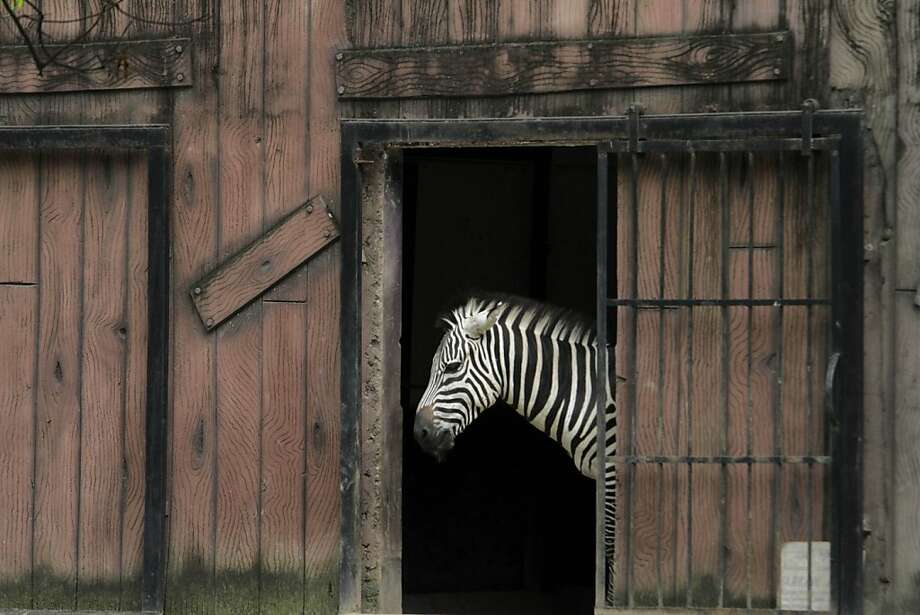 Pondering escape: Well, lookie here. Somebody left my cell door wide open. Should I make a break for it? Even 
