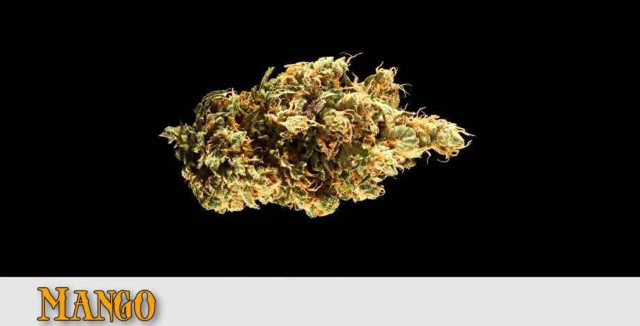 Indica entry from Eco Firma Farms, OR