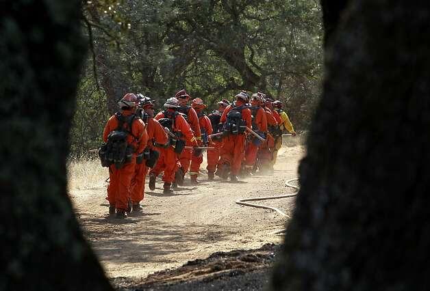 Wildlife Winners Losers In Mt Diablo Fire Sfgate