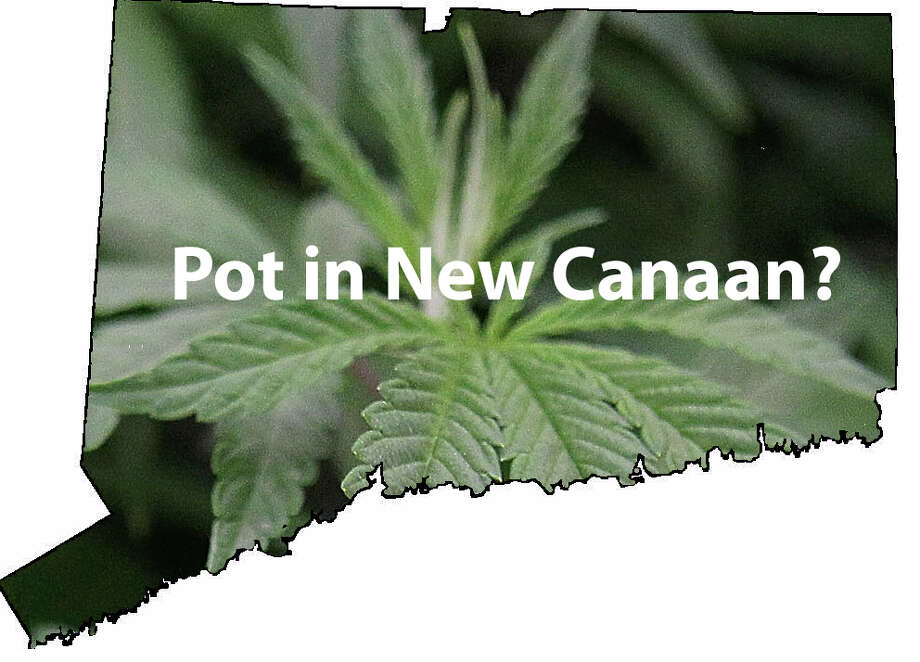 Could New Canaan be the site of a pot shop? Some are against it, others say let the free market decide. Sept. 11, 2013, New Canaan, Conn. Photo: Tyler Woods