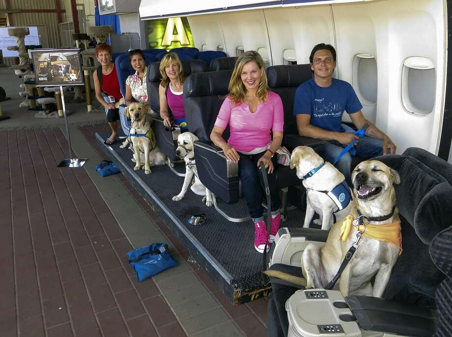 In this Aug 19, 2013, photo provided by Air Hollywood, Megan Blake, Air Hollywood K9 Flight School Program Director, sitting left, front row, with dog Super Smiley, far right, and other puppies from the Canine Companions for Independence pose for a photo during a K9 flight simulation at the America's Family Pet Expo, at the Orange County Fair Grounds in Costa Mesa, Calif. The idea was the brainchild of Talaat Captan, president and CEO of Air Hollywood, the world's largest aviation-themed film studio, who noticed a dog owner having a rough go getting a dog through airport security. (AP Photo/Air Hollywood, Sandra Lollino) Photo: Sandra Lollino, Associated Press